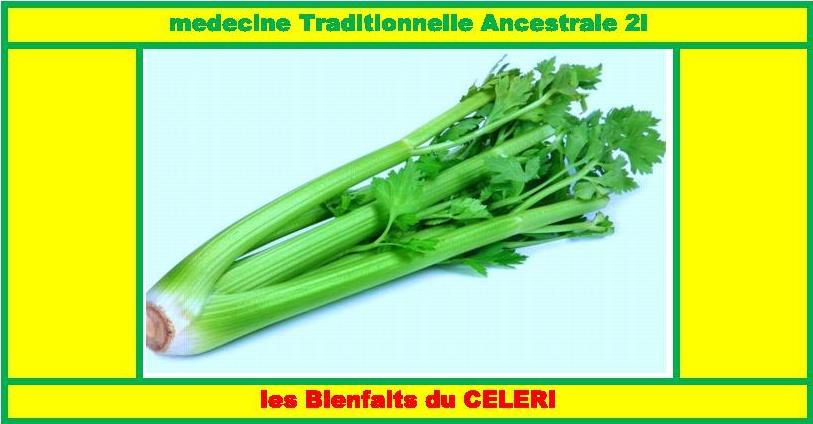 Celeri2