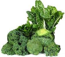 Legumes verts